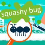 Squashy Bug